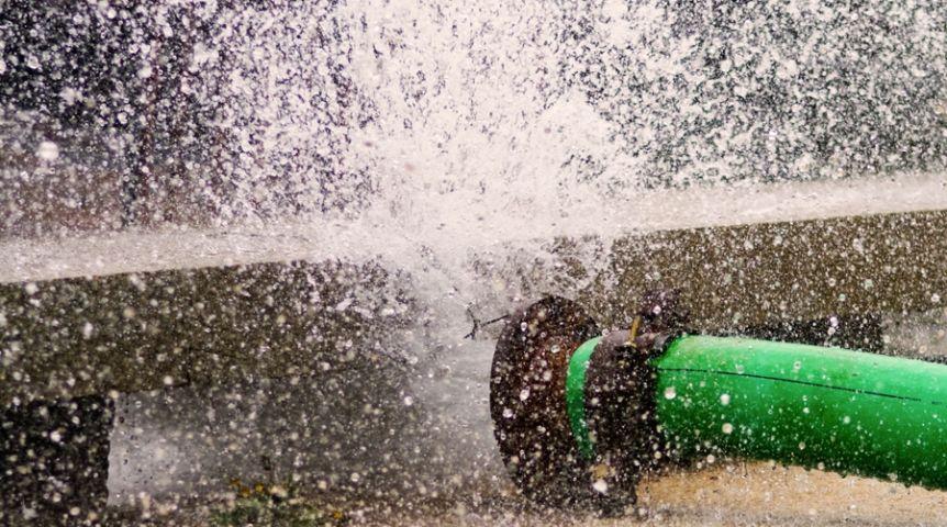 ВОмске набульваре Зеленый разлилось «море»