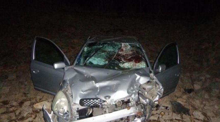 ВОмской области нетрезвый шофёр съехал вкювет иврезался встолб