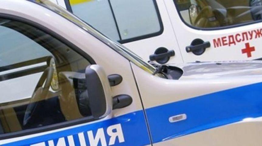 Нафедеральной трассе вОмской области легковушка врезалась вбольшегруз
