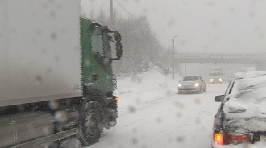 Фургон сцирковыми животными съехал с дороги из-за сильного ветра вКузбассе