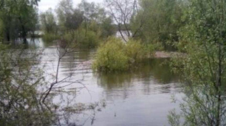 ВОмской области эвакуируют Затон, чтобы спасти его отпришествия Иртыша