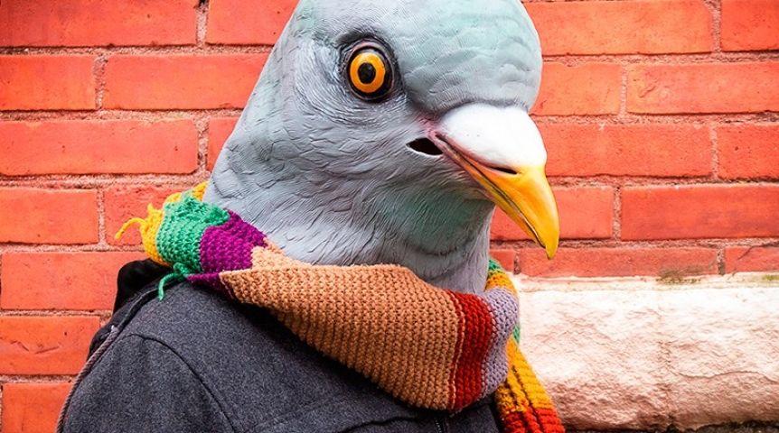 ВОмске группа молодых людей издевались над голубем наглазах удетей