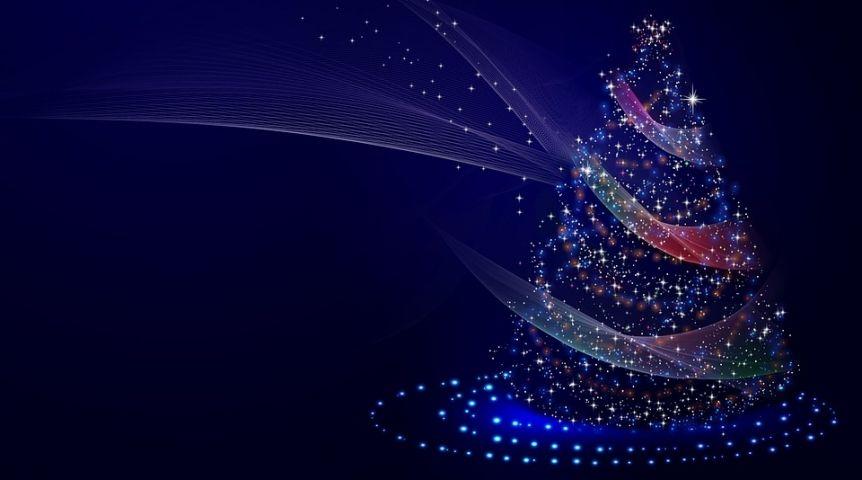 ВОмске уже начали нелегально торговать новогодние ели