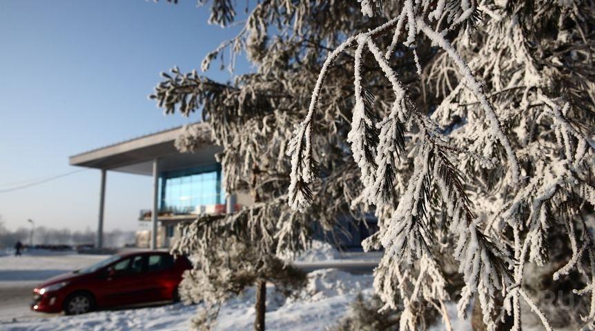 Погода вОмской области зимой останется холодной
