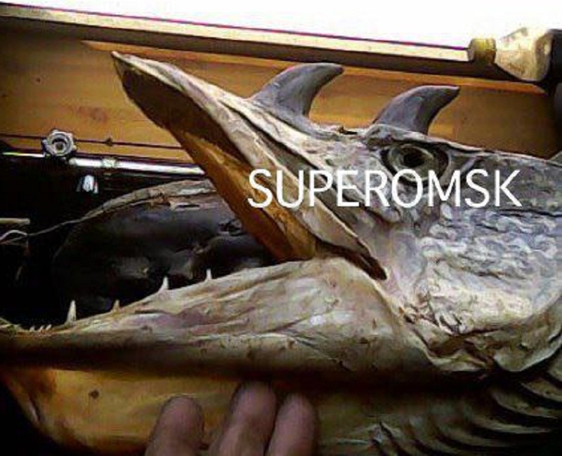 Рыбак изОмской области выловил рогатых хищных рыб